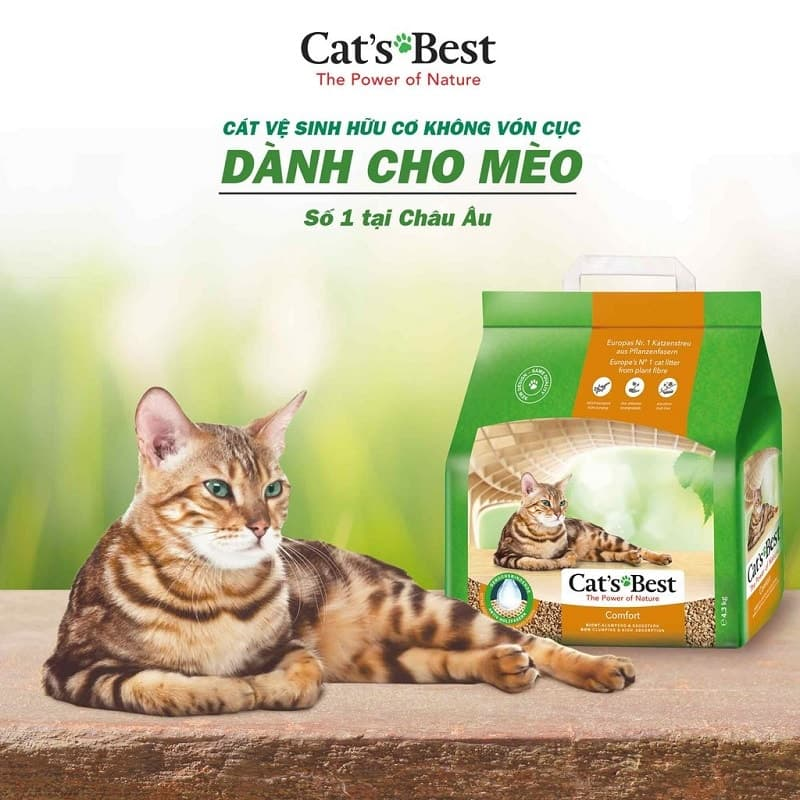 Cát hữu cơ Cat'sBest
