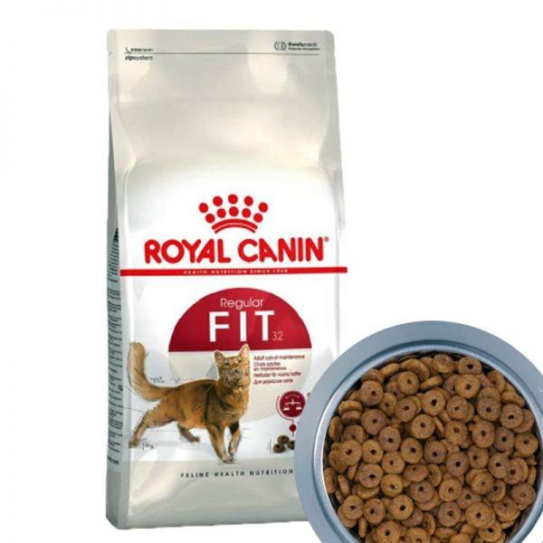 Thức ăn cho mèo Royal canin fit 32 dành cho mèo trưởng thành