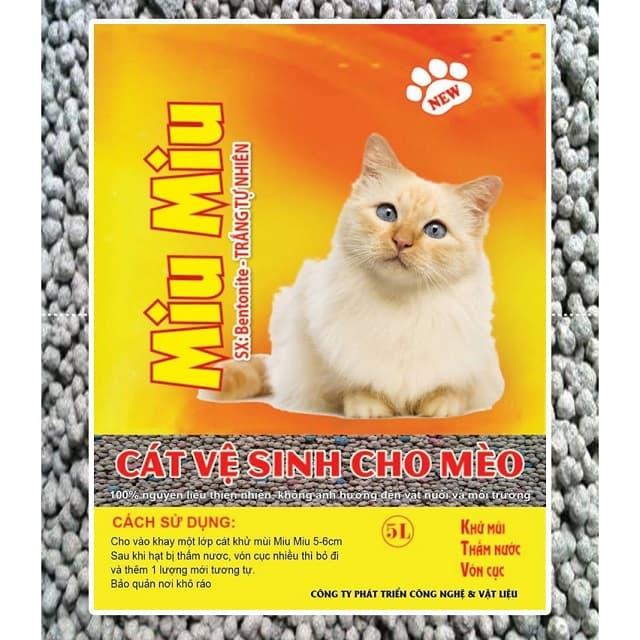 Cách lựa chọn cát vệ sinh cho mèo