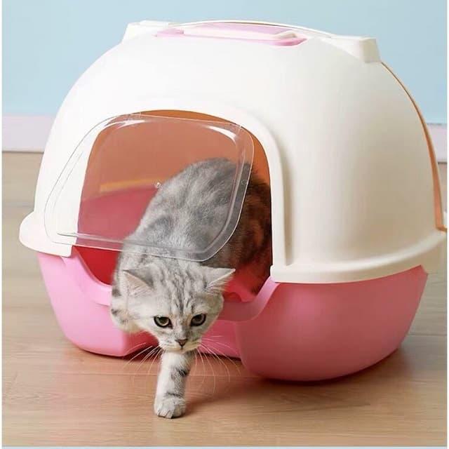 Những yêu cầu quan trọng khi chọn lựa nhà vệ sinh cho mèo