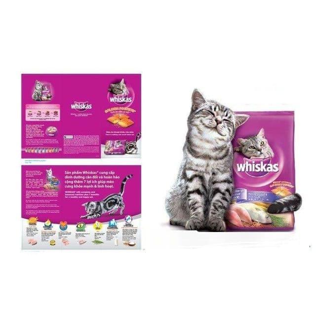 Cho mèo ăn thức ăn whiskas giúp bổ sung các chất dinh dưỡng cần thiết, phòng tránh một số bệnh lý và hạn chế tình trạng rụng lông