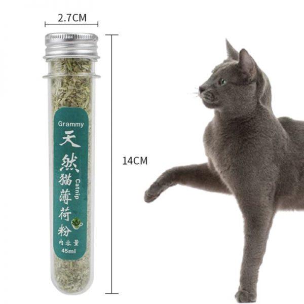 Cỏ bạc hà mèo - Canip dành cho mèo giúp mèo giảm stress, tiêu hóa tốt, chống búi lông trong bụng mèo