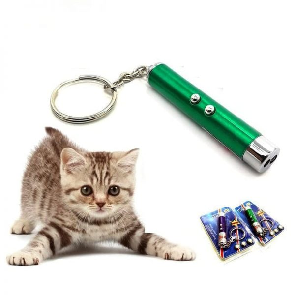 Đèn laze cho chó mèo là loại đồ chơi được thiết kế chiếu tia sáng gây kích thích cho mèo chạy nhảy tìm kiếm