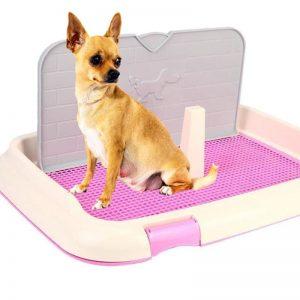 Khay vệ sinh cho chó