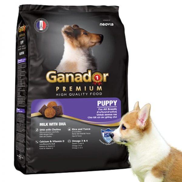 Thức Ăn Khô Cho Chó Con Vị Sữa Và DHA Ganador Puppy