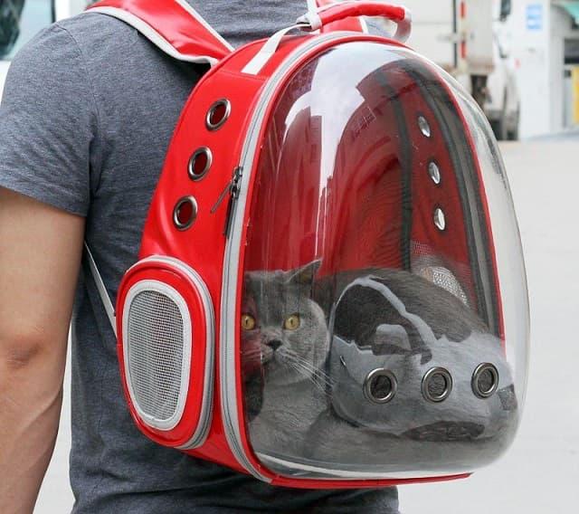 Vinpetcom – đơn vị cung cấp túi vận chuyển chó mèo uy tín
