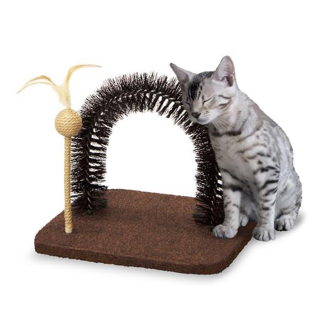Chọn bàn cào móng mới đủ hấp dẫn, kích thích mèo đánh dấu lãnh thổ