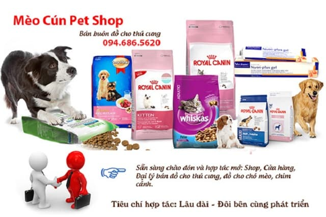Mèo Cún Pet Shop là địa chỉ được nhiều bạn trẻ yêu thích