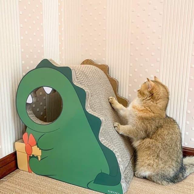 Mua bàn cào móng chất lượng cho mèo cưng