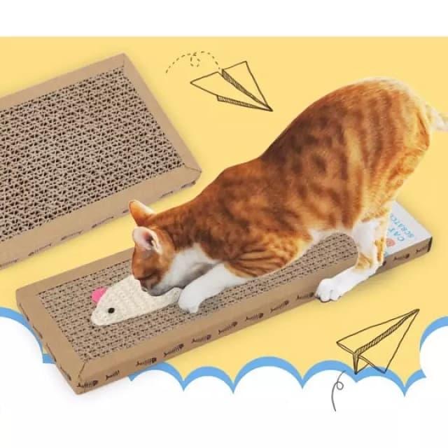 Tập cho mèo sử dụng bộ bàn cào móng mới thay thế chỗ cào cũ