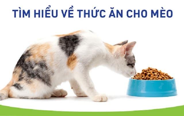 Thức ăn cho mèo chứa đầy đủ thành phần dinh dưỡng thiết yếu