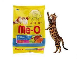 Thức ăn cho mèo được bán tại mọi cửa hàng, shop thú cưng